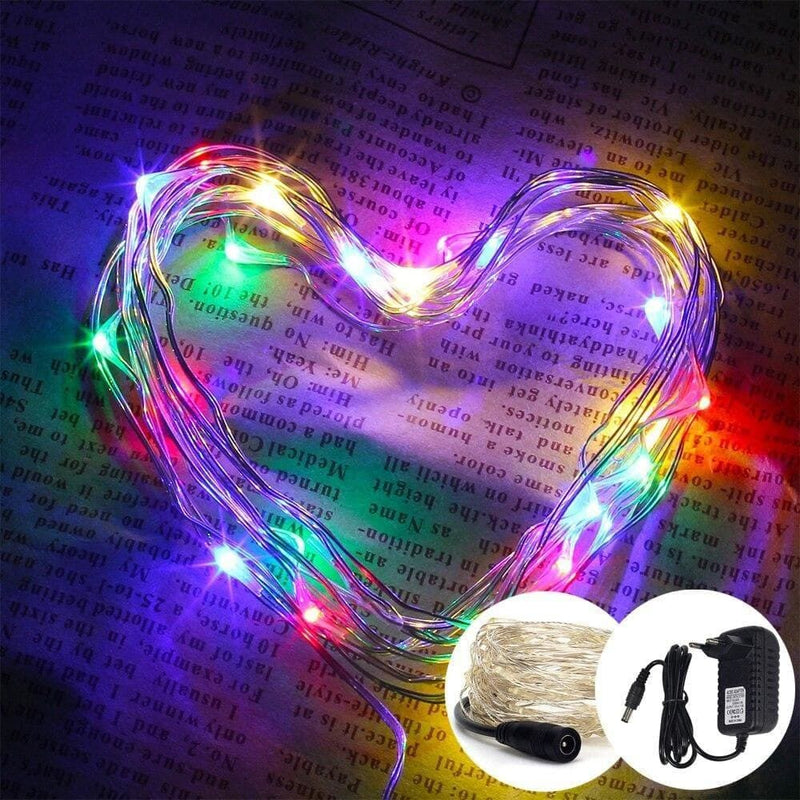 10m 33ft 100led Copper Wire Fairy String Light with 12v 1a